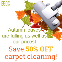 Save 50% OFF Carpet Cleaning!