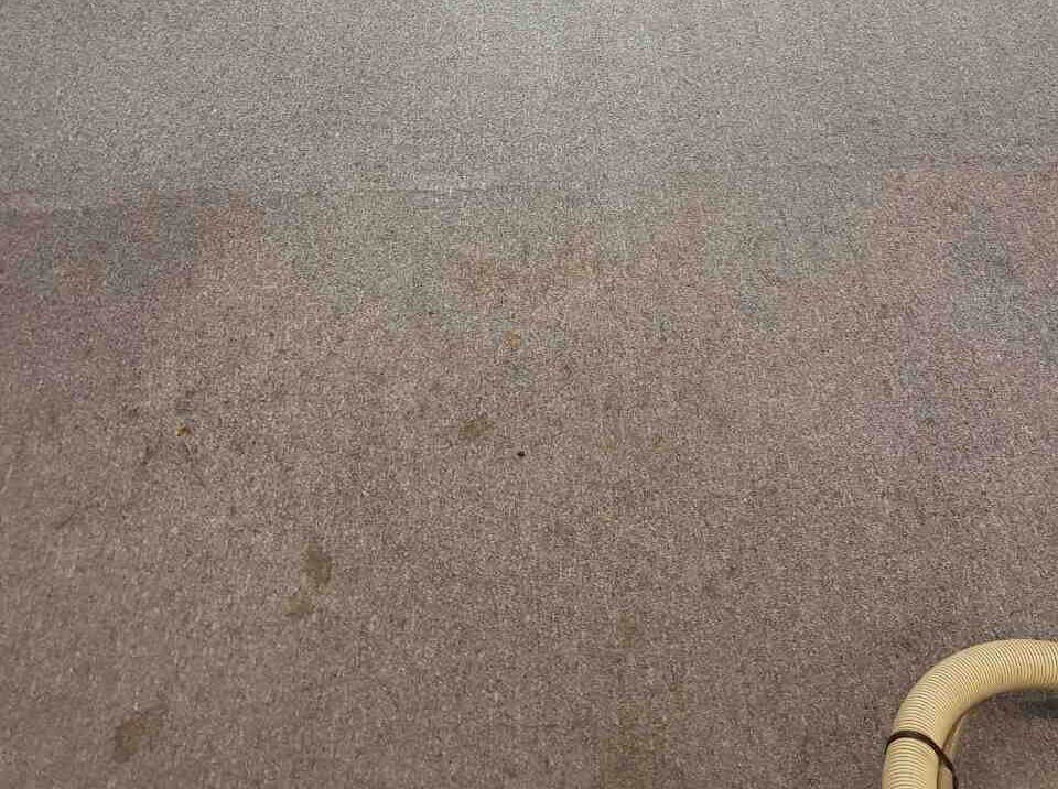 HA8 carpet cleaners Queensbury