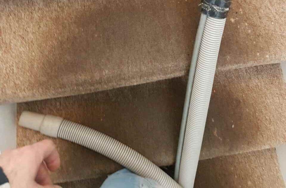 DA16 carpet cleaners Welling
