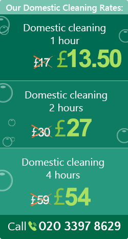 Elephant and Castle cleaning houses